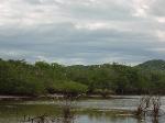 Estero De Yugo Mazatlan Cerritos summer visit
