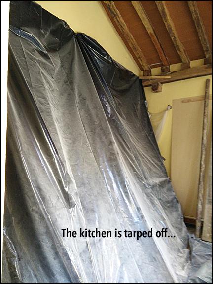 KitchenTarpOut